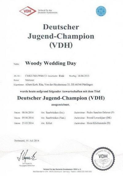 VDH-JGD.Champion Woody.jpg